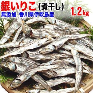 [8/27以降の発送]グルメギフト 煮干し 銀のいりこ 1.2kg 瀬戸内産(業務用) 水だし 水出し 送料無料/産地直送/贈答品|onomichi-marukin