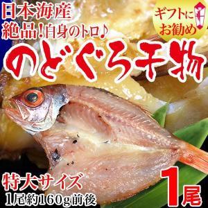 グルメギフト 干物 島根県出雲産 のどぐろ開き 干物 大 約160g〜200g前後×1枚 高級魚 ※受注発注の為お届けに時間がかかります、送料1300円が必要です|onomichi-marukin