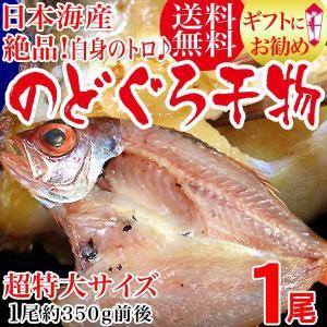グルメギフト 干物 島根県出雲産 のどぐろ開き 干物 特大 約350g〜400g前後×1枚 高級魚 ※受注発注の為お届けに時間がかかります|onomichi-marukin