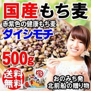 国産 もち麦 大麦 もちむぎ(ダイシモチ) 500g×1袋 ...