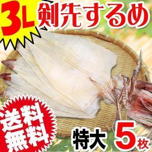 剣先するめイカ 特大(3L)サイズ 5枚1束 (約300〜330g前後) 送料無料|onomichi-marukin