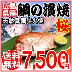 ギフト 送料無料日 炭火焼鯛の浜焼き(桜)(広島県尾道産)|onomichi-marukin