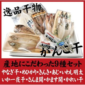 産地こだわり がんこ干 おまかせ特選干物セット|onozaki