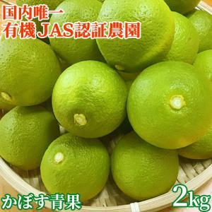 有機JAS認証 無農薬大分県産カボス青果2kg(およそ20個前後) 季節限定 大分有機かぼす農園 送...