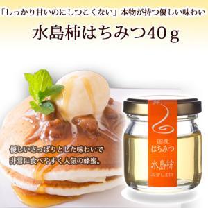 国産水島柿ハチミツ40g ooba-beekeeping