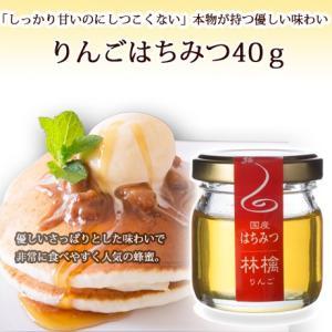 リンゴハチミツ40g|ooba-beekeeping