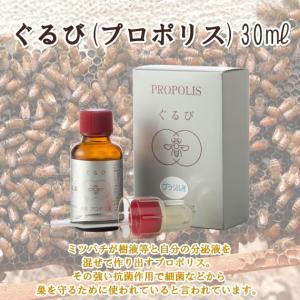 ぐるび(プロポリス)30ml ooba-beekeeping