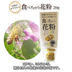 食べちゃう花粉 20g|ooba-beekeeping