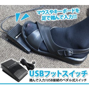 USB 足踏み スイッチ シングル フットペダル フット スイッチ ペダル 足踏み 足 操作 PC パソコン 接続 補助|ER-FOOT1|oobikiyaking