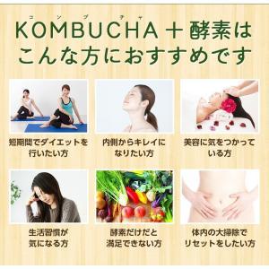 【アウトレット商品】ダイエット 茶 コンブチャ...の詳細画像1