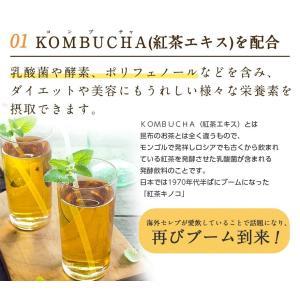 【アウトレット商品】ダイエット 茶 コンブチャ...の詳細画像2