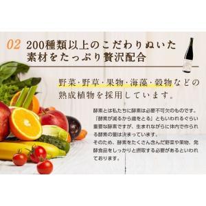 【アウトレット商品】ダイエット 茶 コンブチャ...の詳細画像3
