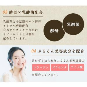 【アウトレット商品】ダイエット 茶 コンブチャ...の詳細画像4