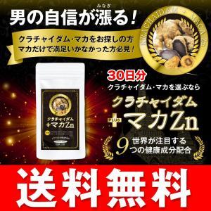 クラチャイダム+マカ Zn 30日分/120粒 亜鉛 サプリ...