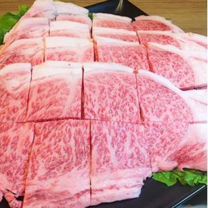 A5 佐賀牛サーロイン 焼肉用 600g|ookini