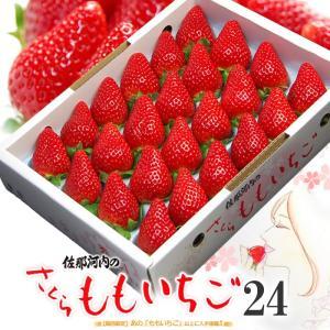さくらももいちご(24粒/約700g)徳島県佐那河内産 贈答用 桃苺 イチゴ 苺 送料無料 お歳暮