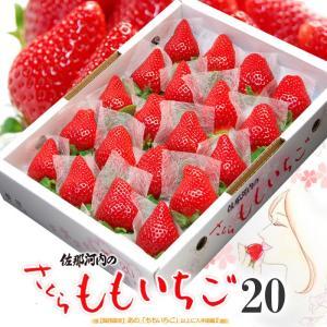 さくらももいちご(20粒/約700g)徳島県佐那河内産 贈答用 桃苺 イチゴ 苺 送料無料 お歳暮