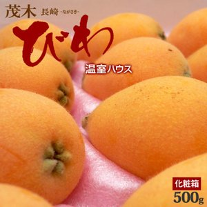 温室茂木びわ(9-12粒/約500g)長崎産 ハウスビワ 送料無料