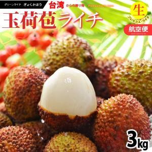 フレッシュ 台湾ライチ 玉荷包(約3kg)台湾産 生ライチ 送料無料