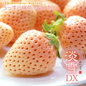 白いちご 淡雪(約200g×2P)熊本産 白イチゴ 白苺 ギ...