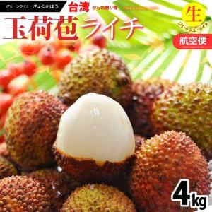 フレッシュ 台湾ライチ 玉荷包(約4kg)台湾産 生ライチ 送料無料