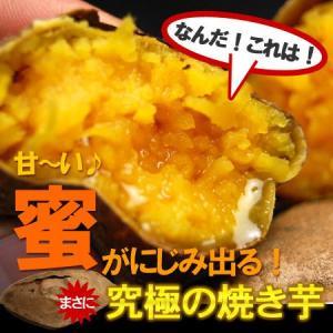 安納芋M/L(2kg)種子島産 サツマイモ さつま芋 蜜芋 送料無料|ookiniya|02