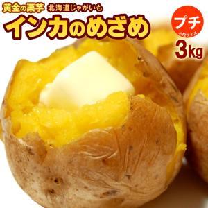 プチインカのめざめ(3kg)北海道 じゃがいも ジャガイモ 送料無料