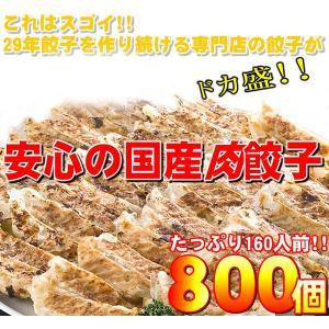 〔ワケあり〕安心の国産餃子800個 160人前送料無料|ookuratakarabori