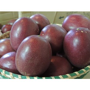 パッションフルーツ1kg(12〜15個入り)