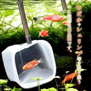 伸縮ステンレスミニ網 メダカ シュリンプ 小型熱帯魚 (シルバー)
