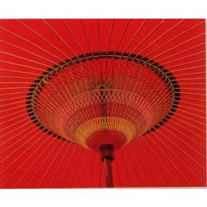 野点用傘 サイズ大|oooka529