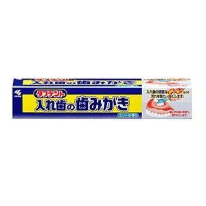 小林製薬 タフデント 入れ歯の歯みがき 95g|oosaki