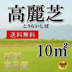 芝生 高麗芝  10平米