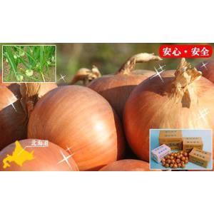 北海道産 玉ねぎ(L・L大込)10kg