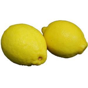 レモン 2玉 (れもん)|ootsuru