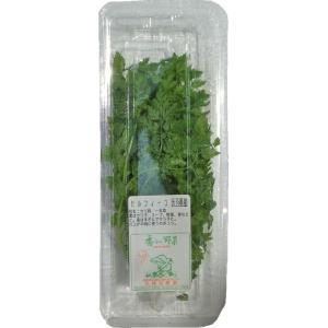 ハーブ チャービル 1パック 【九州・主に大分・福岡】(セルフィーユ・コジャック)・野菜・やさい|ootsuru