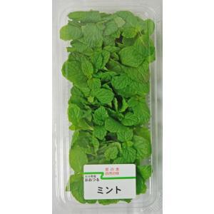 ミント 1パック 国産 ハーブ・野菜・やさい ootsuru