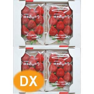 【いちご】 九州産 あまおう DX(デラックス) 2箱(4パック) 福岡産 (博多あまおうイチゴ) 九州の安心・安全な果物!|ootsuru