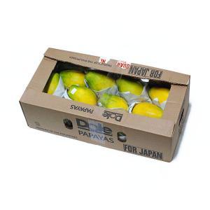 【箱売り】 パパイヤ(パパイア) 1箱5kg10玉〜14玉入り フィリピン・ハワイ産  【業務用・大量販売】