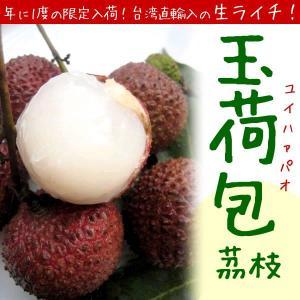 【平成30年分予約販売】【ライチ】 玉荷包(ユイハァパオ) 1箱(約5kg) 台湾産 【6月上旬〜発送】