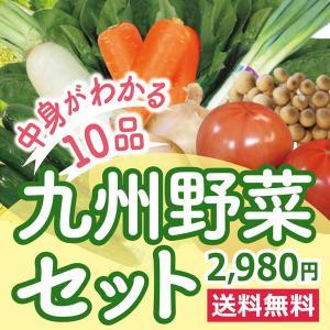 なかみが分かる 九州野菜セット《きゃべつ・ピーマン・なす・エリンギ・小松菜・きゅうり・とまと・さつま...