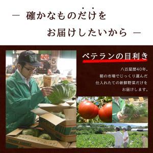 【あすつく】【セット】 おまかせ 九州野菜セット 15品 旬の野菜詰め合せ・おまかせ詰め合わせセット!西日本 【送料無料】|ootsuru|04
