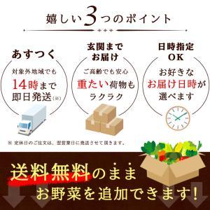 【あすつく】【セット】 おまかせ 九州野菜セット 15品 旬の野菜詰め合せ・おまかせ詰め合わせセット!西日本 【送料無料】|ootsuru|09