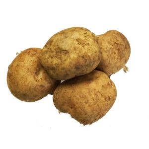 新馬鈴薯 1kg 九州産 ばれいしょ・バレイショ・ジャガイモ