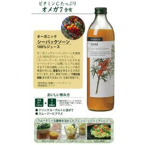 カスケイン シーバックソーン100%ジュース*500ml|ootuki