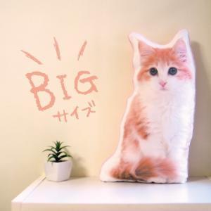 ビッグサイズ 犬 猫 ペット 動物 ノルウェージャン クッション ぬいぐるみ インテリア メモリアル プレゼント オーダーメイド 画像 写真 フワモコ