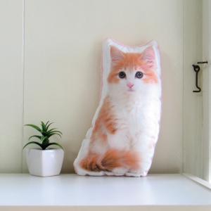 犬 猫 ペット 動物 ノルウェージャン クッション ぬいぐるみ インテリア メモリアル プレゼント オーダーメイド 画像 写真 フワモコ
