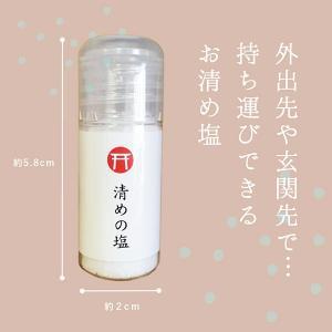 塩 浄化グッズ 風水 携帯お清め塩 天然塩 開運 厄払い 国産塩 10g|oraho