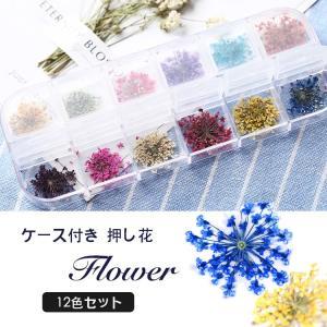 ドライフラワー 押し花 フラワー 12カラー セット ネイル 花 12色 ネイル用品 ホイル ジェル...