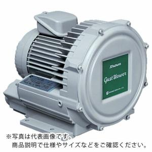 昭和 電動送風機 渦流式高圧シリーズ ガストブロアシリーズ(0.2kW) ( U2V-20T ) 昭和電機(株)|orangetool